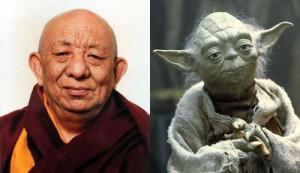 yoda-rinpoche