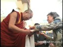 Corinne McLaughlin meetings the Dalai Lama